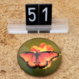 Switch Steen 30mm Vlinder