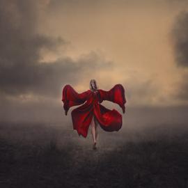 Vleugels van Verandering