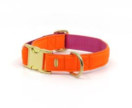 SCUBA halsband - orange