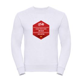 Wieler sweater Arcalis