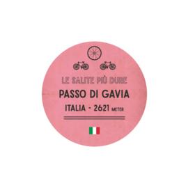 Wieler hoodie Passo Di Gavia
