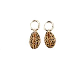Sea shell leopard earring - gold