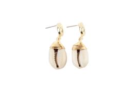 Shiny sea shell earring - gold