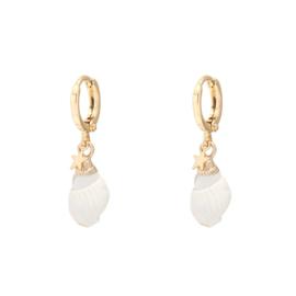 Classy sea shell star earring - gold