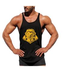 Lion stringer