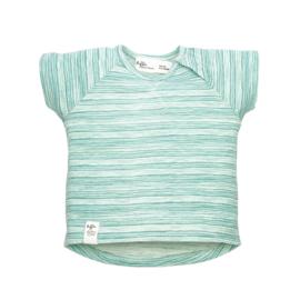 Riffle T-shirt stripe green maat 62 en 86/92