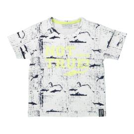 Dirkje T-shirt maat 74