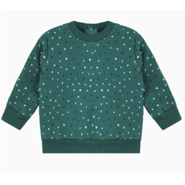 Dukcy Beau Sweater maat 62