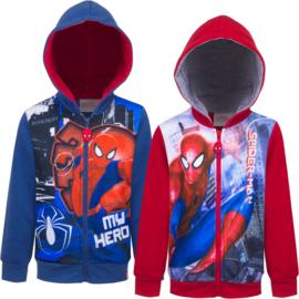 Spiderman sweatshirt Broadway