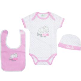 DISNEY 3 DELIGE BABY SET NEWBORN Meisjes Roze /  0-3 en 3-6 maanden
