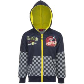 Cars Disney hoodie met rits