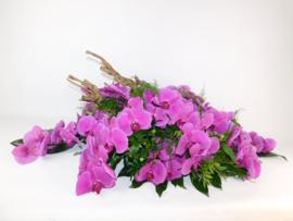Orchidee roze + tak | 100cm