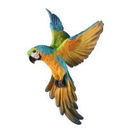 PARADISE 14 BIRD 31,5X8,3X49,7CM