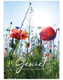 Poster A4 Geniet