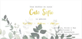 Kaart   Cato