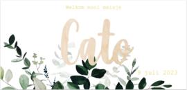 Kaart | Cato