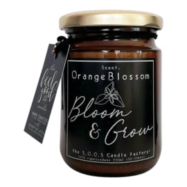 Orange Blossom