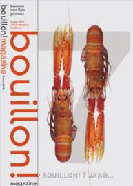 Bouillon 27