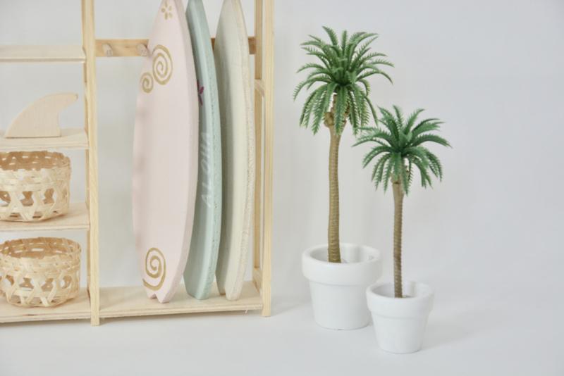 Palm M