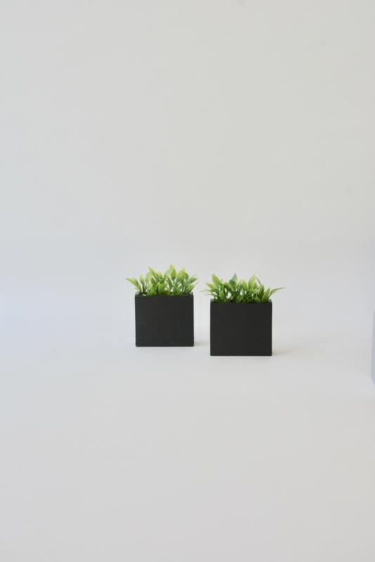 Plantenbak L
