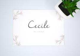 Geboortekaartje Cecile