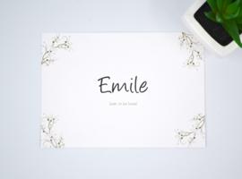 Geboortekaartje Emile