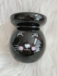 Brander kat zwart