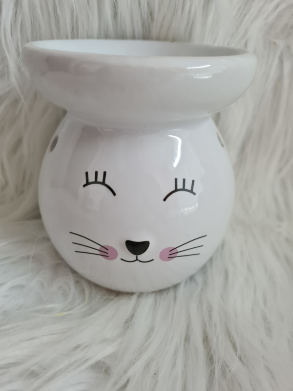 Brander kat wit