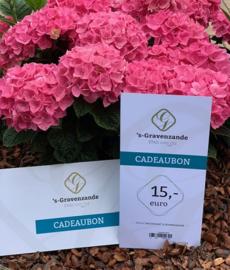 Cadeaubon 's-Gravenzande €15,-