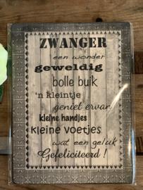 Nostalgisch Bordje 'Zwanger'