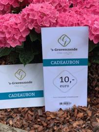 Cadeaubon 's-Gravenzande €10,-