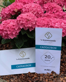 Cadeaubon 's-Gravenzande €20,-