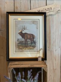 Landelijk Schilderij Hert