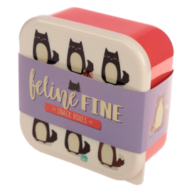 Lunchtrommels kat