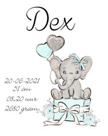 Geboorte olifant blauw