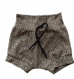 Short leopard sand