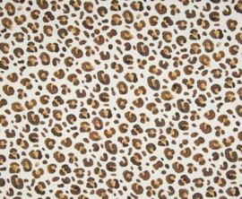 leopard camel/bruin