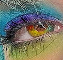 Regenboog Lenzen | Rainbow