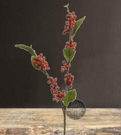 Wild Berry Spray | Rood