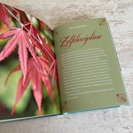 Boek Stephen R. Covey Leef vanuit je verbeelding