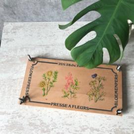 Langwerpige bloemenpers L