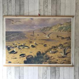 Schoolplaat M.A. Koekkoek - Aan het strand