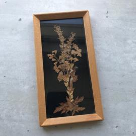 Vintage schilderijtje droogbloemen 2