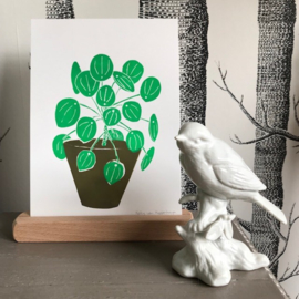 Linoprint 'Pilea' (in kleur)