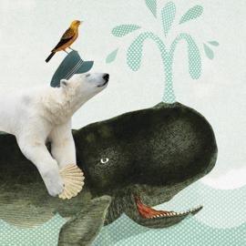 Walvis & IJsbeer