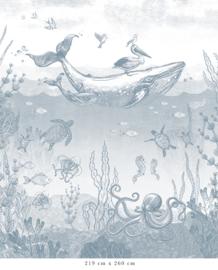 Walviswereld   blauw