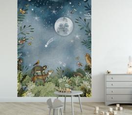 Bos in de nacht voor Dees Styling | 685b x 330h cm