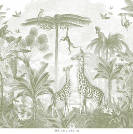 Giraf & slingeraapjes | groen