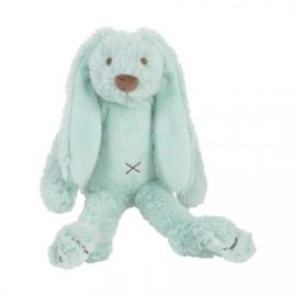 Tiny Rabbit Richie Lagoon