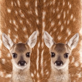 Sock my feet bambi